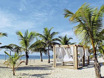 Foto Coral Costa Caribe **** Juan Dolio