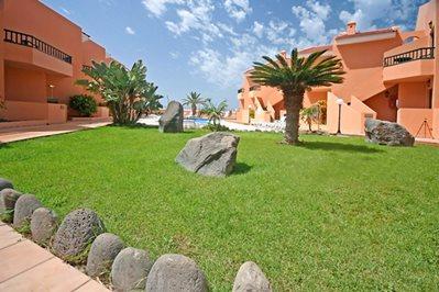 Foto Tres Palmeras ** Valle Gran Rey