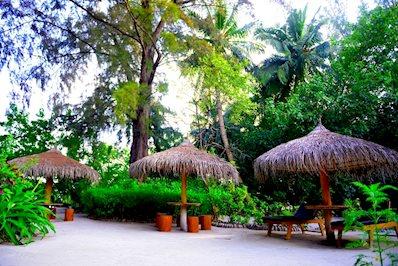 Foto Biyadhoo Island Resort *** Biyadhoo