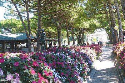 Foto Marina di Venezia ***** Punta Sabbioni