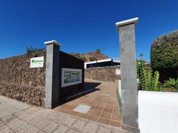 Foto Palmeras Garden *** Playa Blanca
