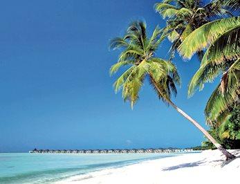 Foto Sun Island Resort **** Nalaguraidhoo Island