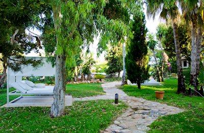 Foto Paraiso De Los Pinos *** Playa Migjorn