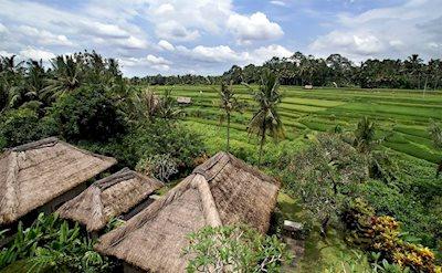 Foto Maya Ubud ***** Ubud