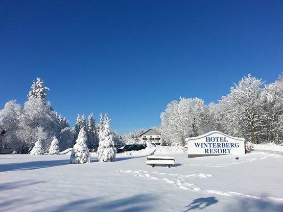 8 daagse wintersport vakantie naar Winterberg Resort in winterberg, duitsland