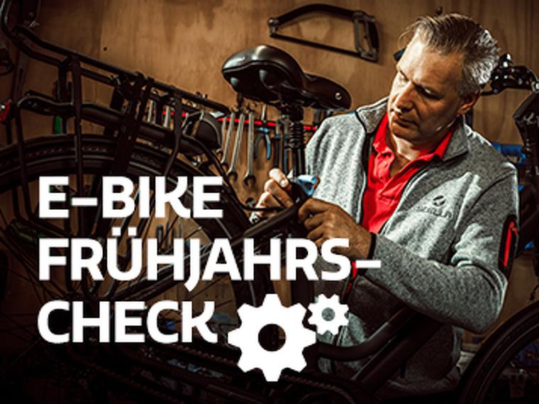 E-Bike Frühjahrs-Check