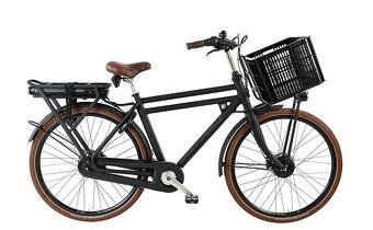 Elektrische Transportfiets Kopen Kies Voor Een Stella E Bike