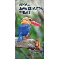 Bloomsbury Birds Of Java, Sumatra & Bali