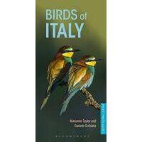 Bloomsbury Vogelgids Italië - Birds Of Italy