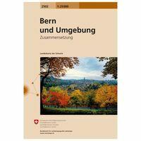 Bundesamt - Swisstopo Topografische Kaart 2502 Bern Und Umgebung