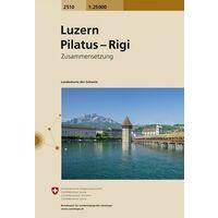 Bundesamt - Swisstopo Topografische Kaart 2510 Luzern Und Umgebung