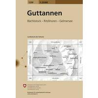 Bundesamt - Swisstopo Topografische Kaart 1230 Guttanen
