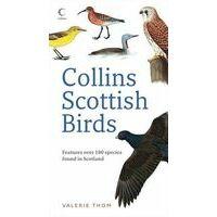Collins Vogelgids Scottish Birds