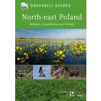 Crossbill Guides North-East Poland - Bialowieza