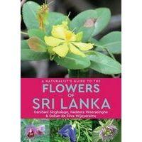 John Beaufoy Guide To The Flowers Of Sri Lanka