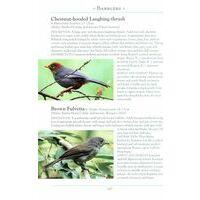 John Beaufoy Vogelgids Birds Of Borneo - Naturalist's Guide