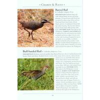John Beaufoy Birds Of The Philippines