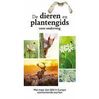 Kosmos Dieren En Plantengids Voor Onderweg