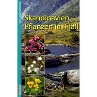 Edition Elch Plantengids Skandinavien: Pflanzen Im Fjäll