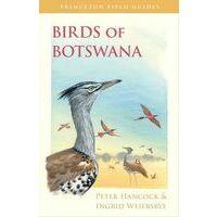 Princeton Vogelgids Birds Of Botswana