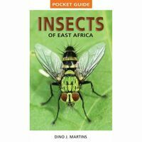 Struik Pocket Guide Insects Of East Africa
