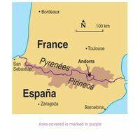 Sunflower Pyrenees