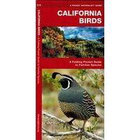 Waterford California Birds