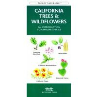 Waterford California Trees & Wildflowers