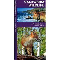 Waterford Californian Wildlife