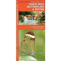 Waterford Costa Rican Butterflies & Moths