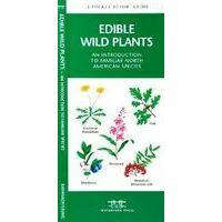 Waterford Edible Wild Plants North American Species