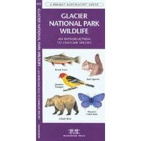 Waterford Glacier National Park Wildlife