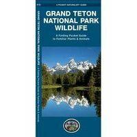 Waterford Grand Teton National Park Wildlife