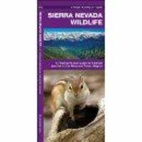 Waterford Sierra Nevada Wildlife