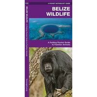 Waterford Wildlife Belize