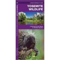 Waterford Yosemite Wildlife